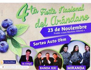promo fiesta 2014 bis(1)